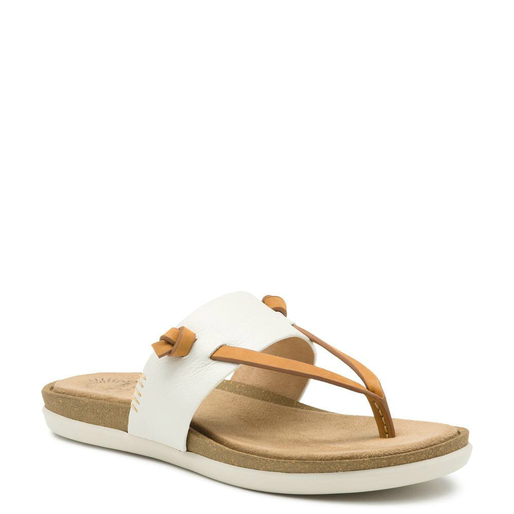 Bass Women's Sunjuns Shannon Thong Sandal - White 71-23010 - ShoeShackOnline