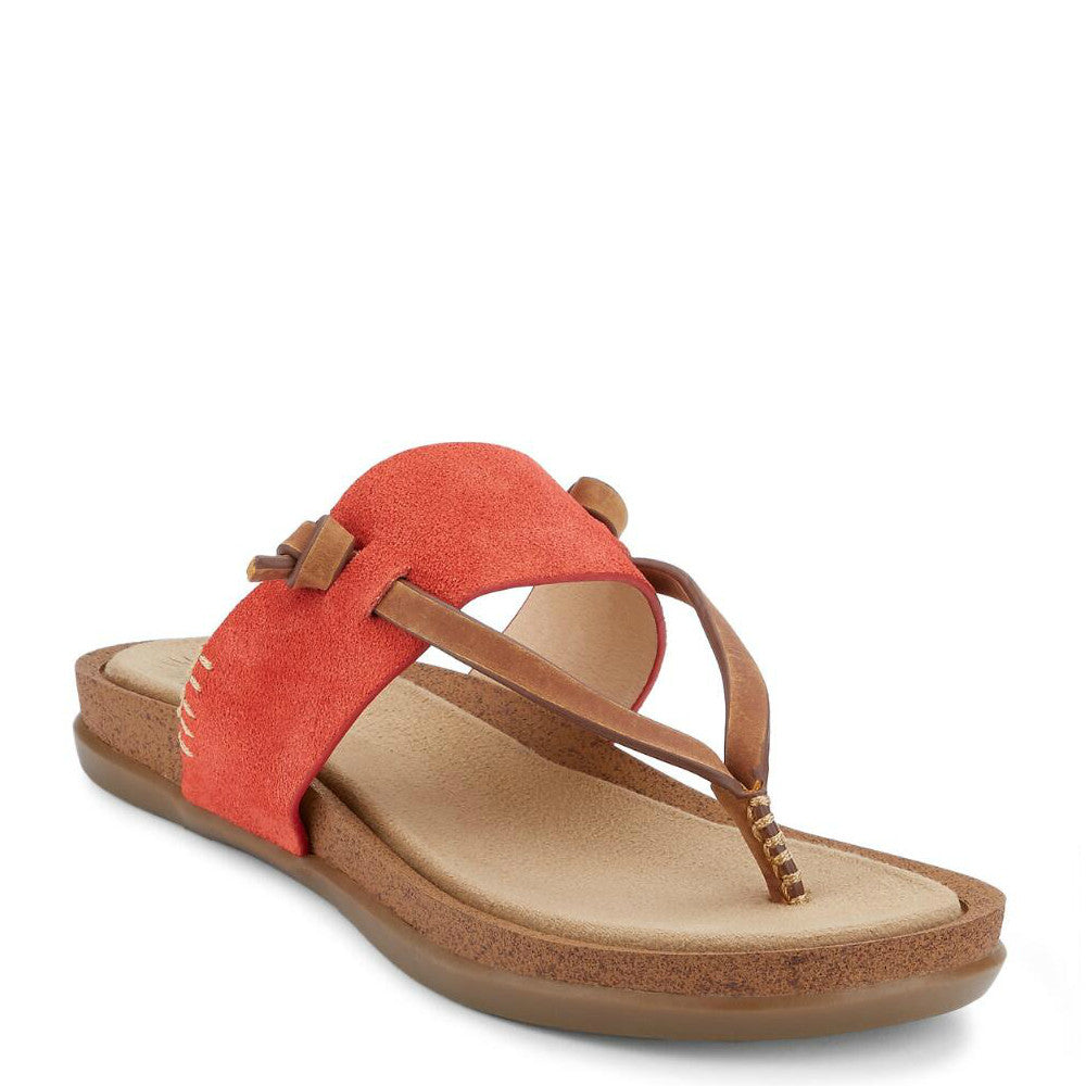 Bass Women's Sunjuns Shannon Thong Sandal - Poppy 71-23019 - ShoeShackOnline