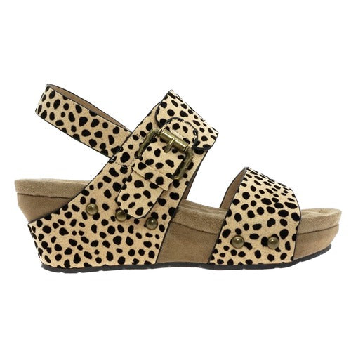Pierre Dumas Women's Whisper-5 Buckle Wedge Sandal Cheetah Print 22380-450