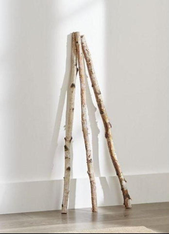 Set of 3 Birch Branches