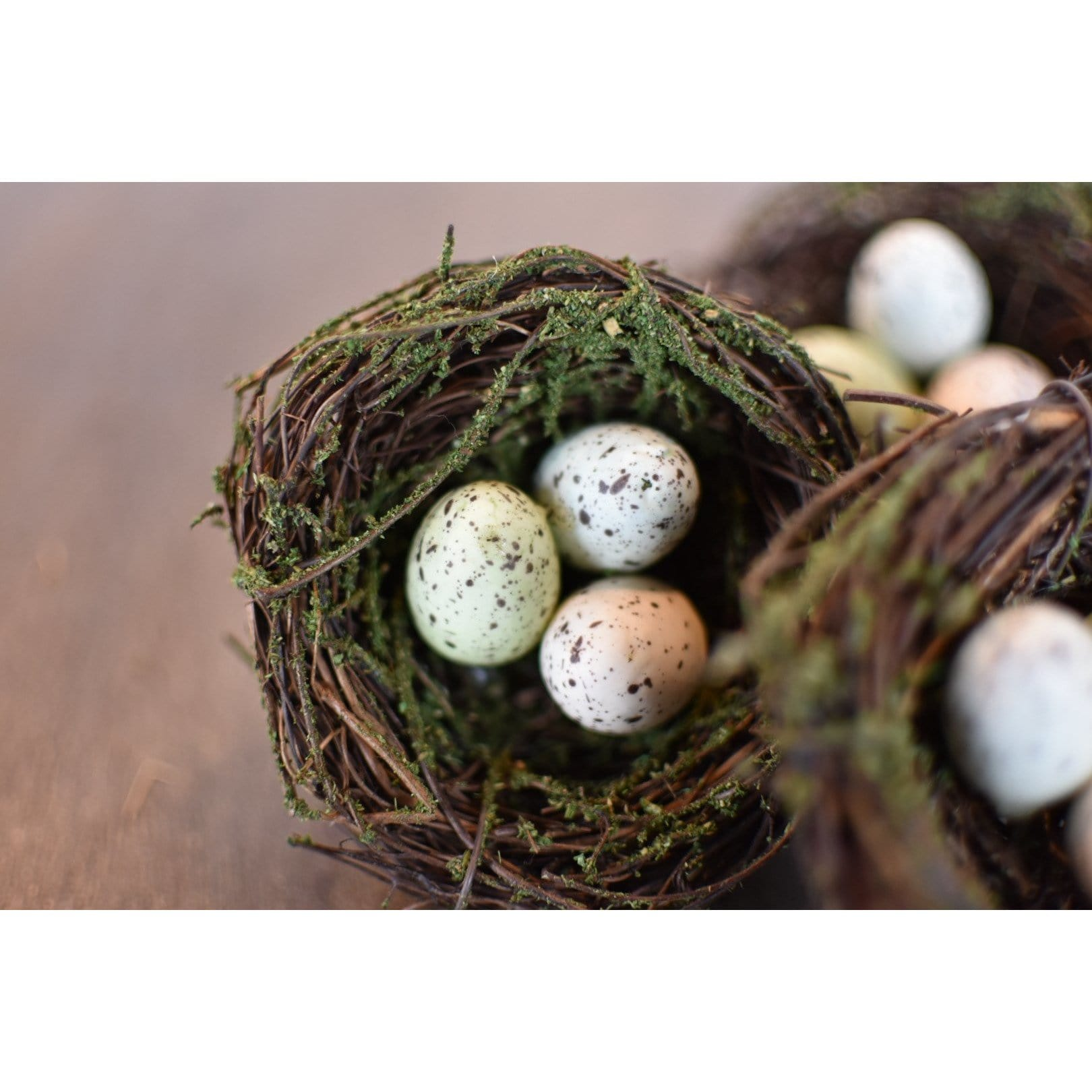 Bird Nest with Assorted Eggs
