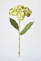 "26"" Branches of Bamboo with Greenery Leaves"