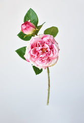 "15"" Poppy Bush White"