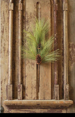 Long Needle Pine Spray