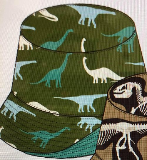 Reversible Bucket Hat- Moss Sauropods with Shore