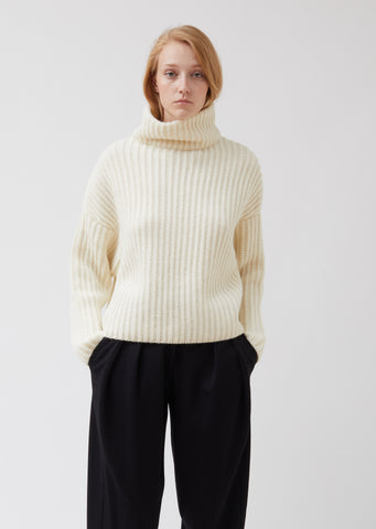 Alpaca Batwinged Turtleneck Sweater