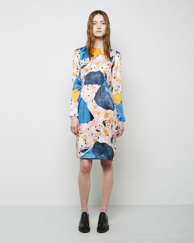 Noble Printed Silk Dress