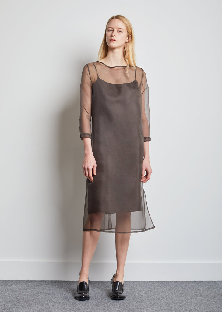 Didion Organza Dress