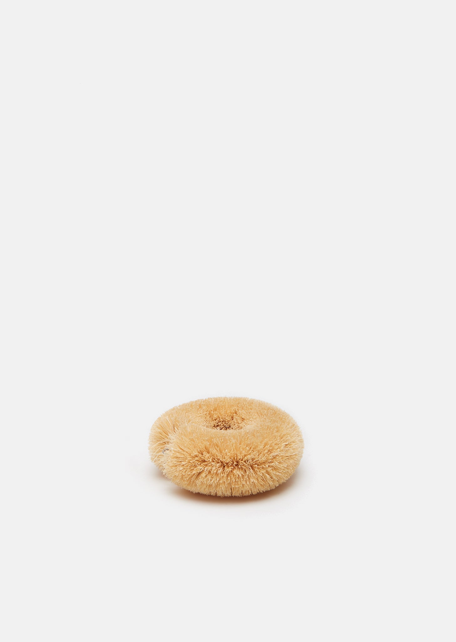 Circle Scrubber Brush