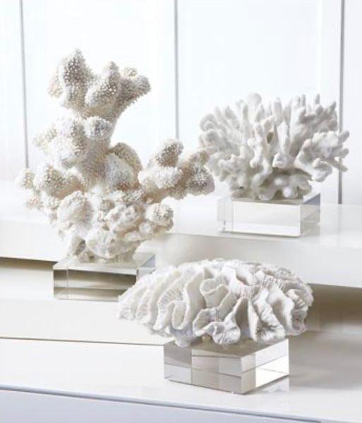 Set of Three White Coral on Base