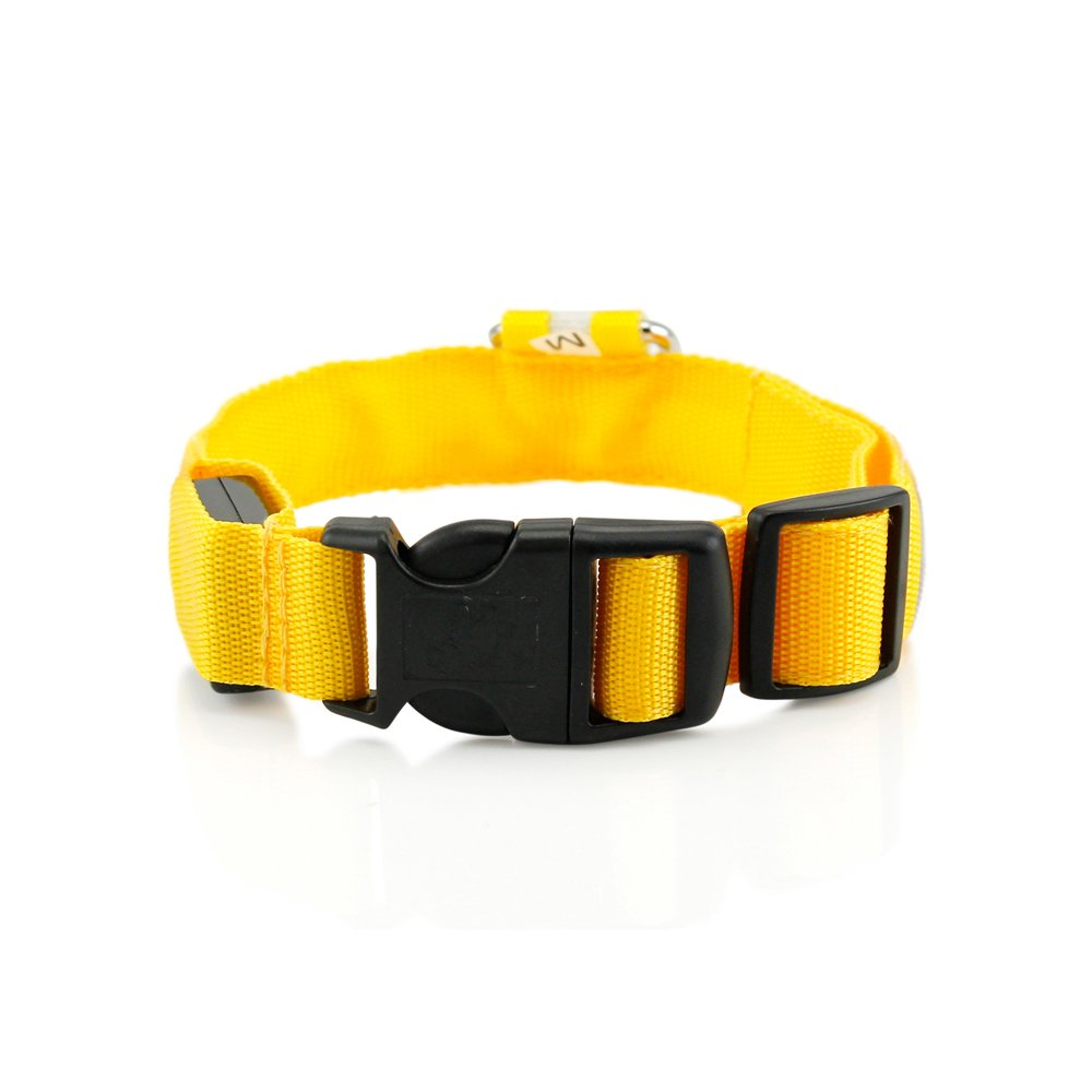 GEARONIC TM Small LED Lights COLOR Light Up Pet Dog Cat Night Safety Waterproof Nylon Neck Adjustable Collar