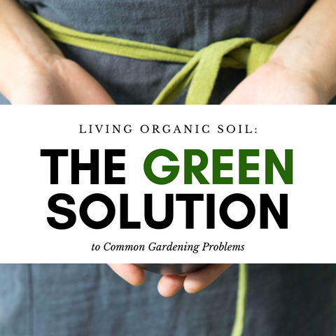 Living Organic Soil: The Green Solution to Common Gardening Problems