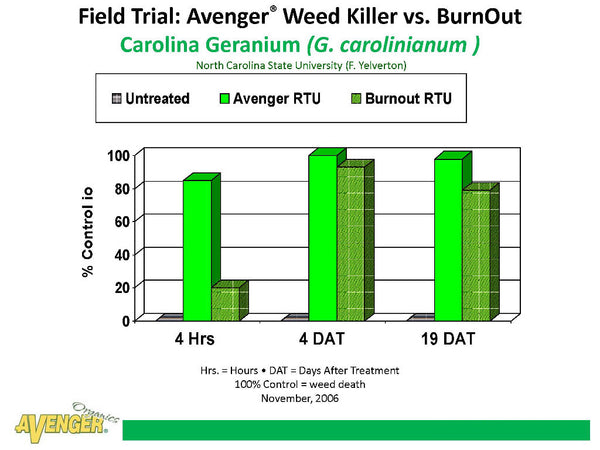 Avenger Organic Weed Control Killer Ready To Use (RTU) Field Trial: Avenger Weed Killer vs. BurnOut Carolina Geranium (G. carolinianum ) North Carolina State University (F. Yelverton) - Rocky Mountain Bio-Ag
