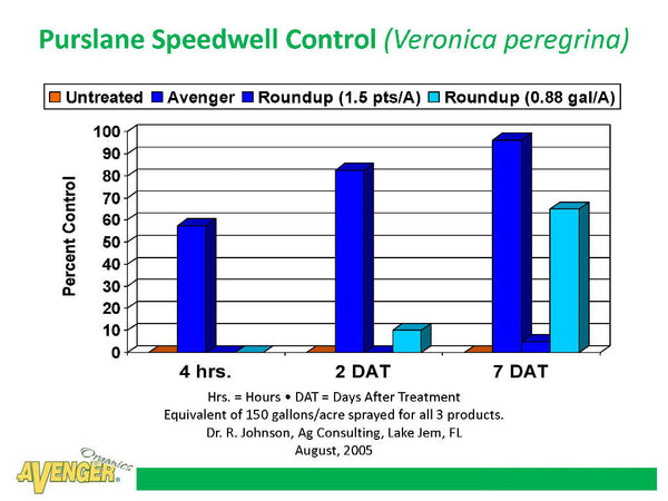 Avenger Organic Weed Control Killer Ready To Use (RTU) vs Roundup Purslane Speedwell Control (Veronica peregrina) By Dr. R. Johnson, Ag Consulting, FL - Rocky Mountain Bio-Ag