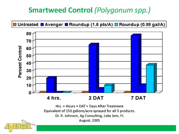 Avenger Organic Weed Control Killer Ready To Use (RTU) vs Roundup Smartweed Control (Polygonum spp.) By Dr. R. Johnson, Ag Consulting, FL - Rocky Mountain Bio-Ag