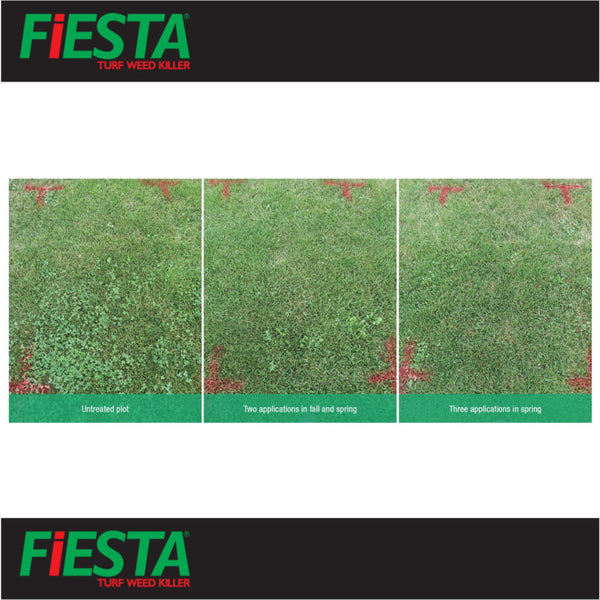 fiesta selective post emergent turf weed killer side by side rocky mountain bioag