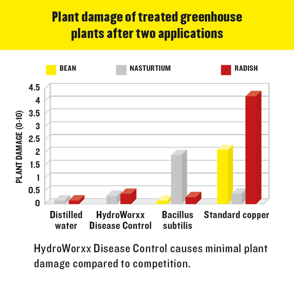 disease control hydroworxx plant damage of treated greenhouse plants after two applications rocky mountain bioag