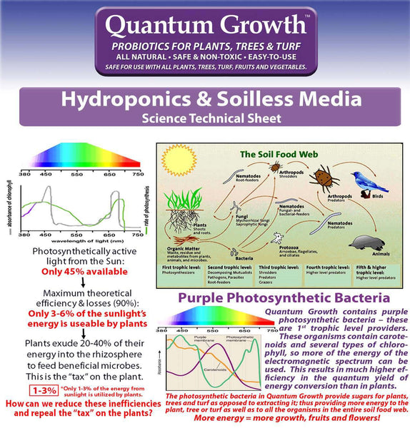 Quantum Growth Photosynthetic Bacteria Light Science and Soil Food Web - Rocky Mountain Bio-Ag