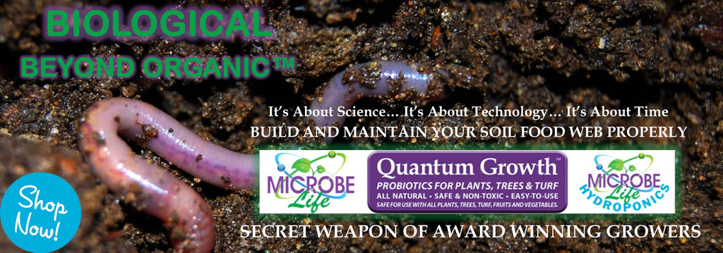 quantum growth microbes microbe life hydroponics microbial inoculant rocky mountain bio ag