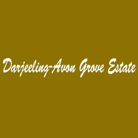 Darjeeling-Avon Grove Estate