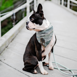 PET LOVERS PET BANDANA
