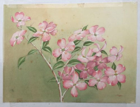 H.Payne  Stem Of Roses Watercolour Double Sided,Paintings - Hatherley Fine Art Gallery