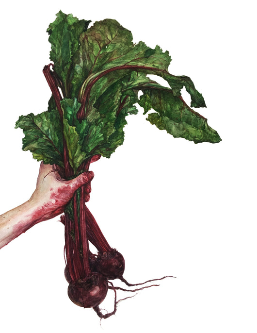Keep the Beet by Lindsay Ryden