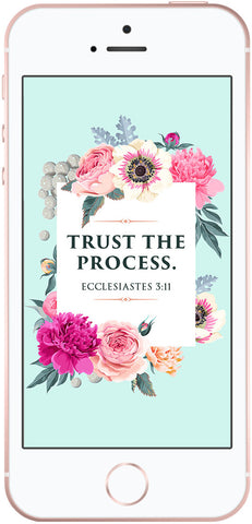 scripture phone wallpaper, ecclesiastes 3:11, christian phone backgrounds