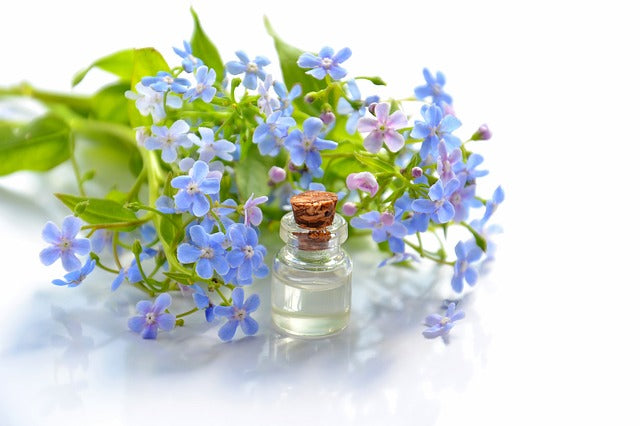 Essential Oils are amazing but what do I do with them?