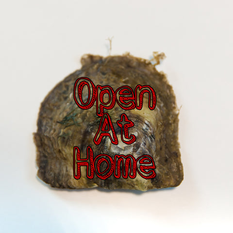 Open at Home Original Oyster
