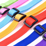 Colorful Dog Seat Belt Clips