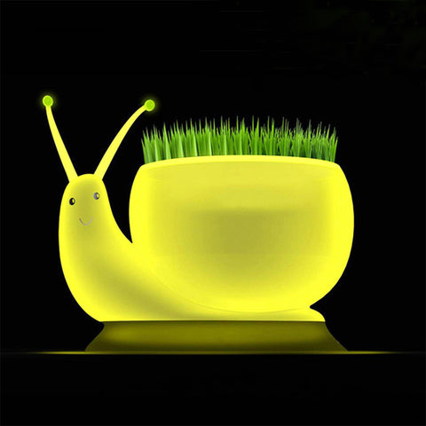 Ecological Snail Plant Lamp - The Kind Owl