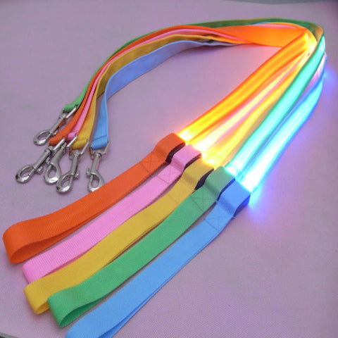 Night Safety LED Flashing Glow Dog Leash (120cm)