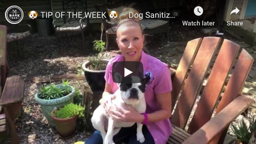 🐶 TIP OF THE WEEK 🐶 – Dog Sanitization