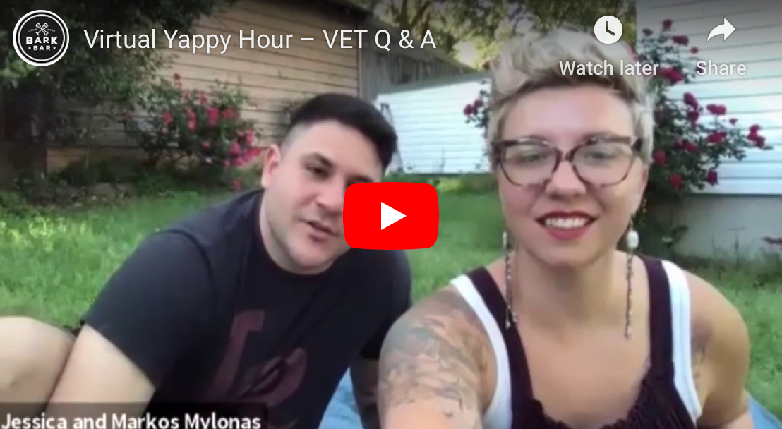🐶 Virtual Yappy Hour 🐶 – VET Q & A