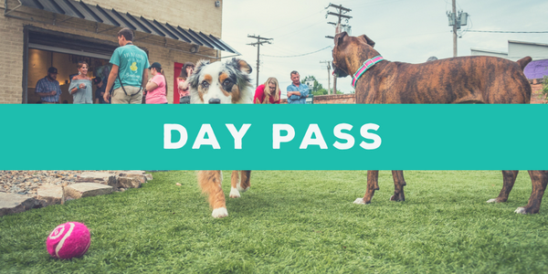 Day Play Pass