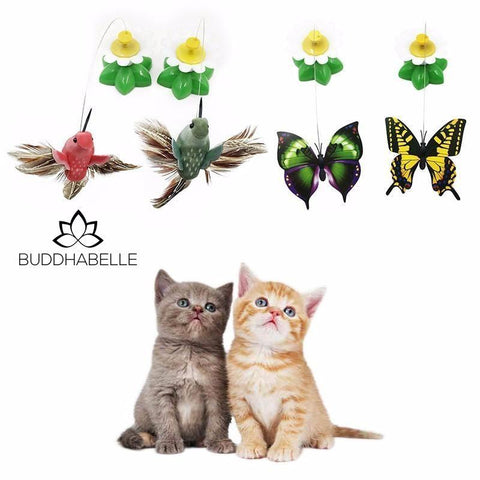 Electric Rotating Butterfly Cat Toy Lover