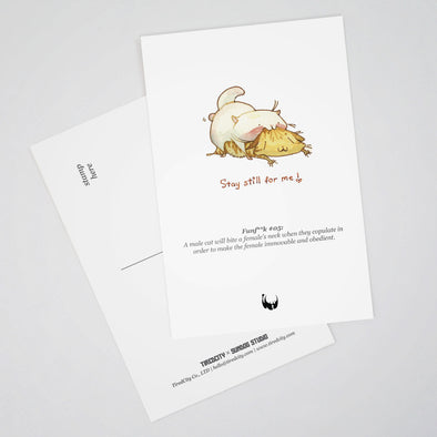 Fun Fuck Postcards by Sundog Studio