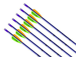 Arrows And Arrow Making,Bows - Easton Jazz Beginners Aluminium Arrows