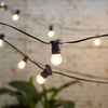 Festoon Party Lights - 20 metres