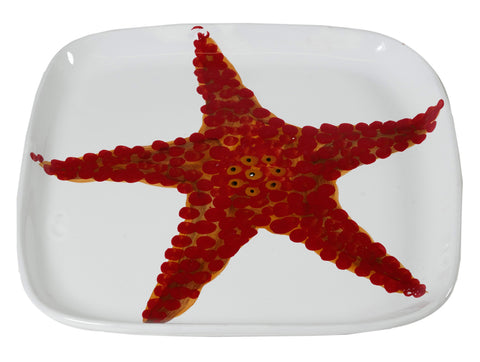 Corallo-Square platter-Starfish