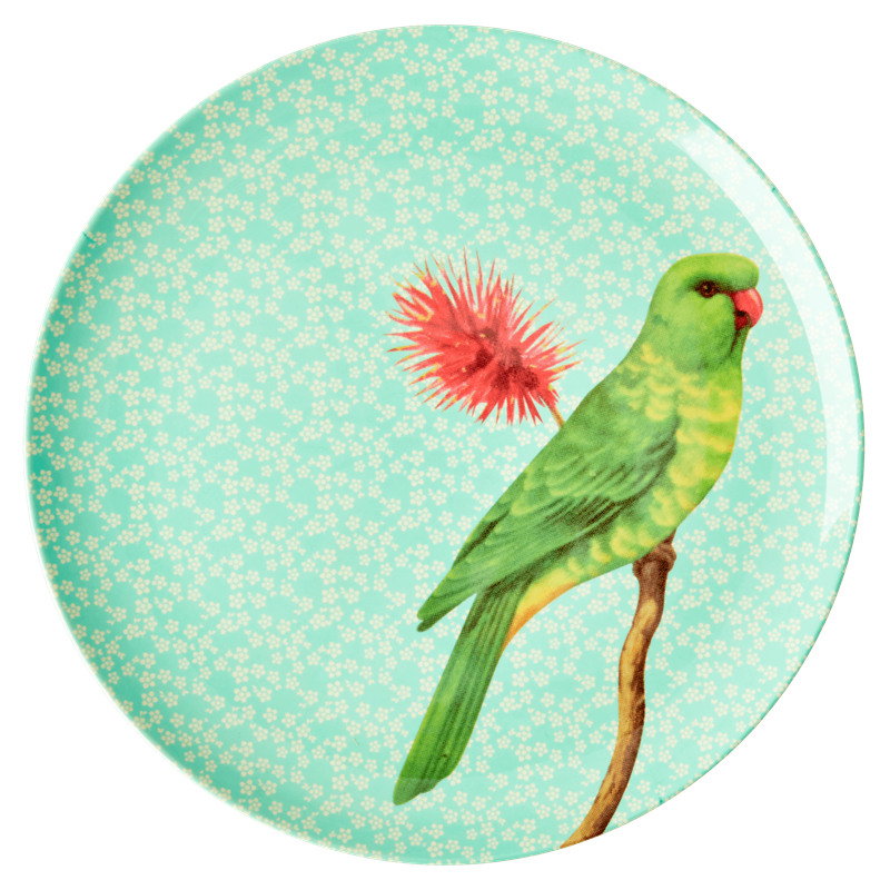 MELAMINE DINNER PLATE WITH VINTAGE BIRD PRINT-GREEN, KITCHENWARE, RICE, - Fabrica