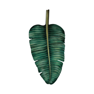 Banana Tree Decorative Leaf - Equator