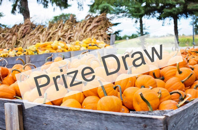 WIN a £50 Gift Card in Our Hallowe'en Prize Draw