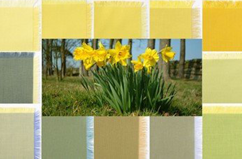 SAVE 20% on Yellows and Greens