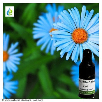 Chamomile (Blue) Essential Oil (3 ml) | NATURAL COSMETIC UAE