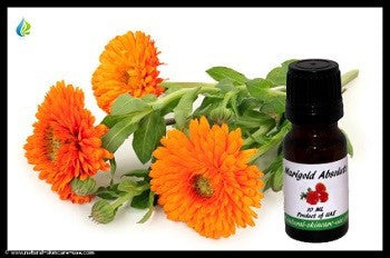 Marigold Absolute Oil (10 ml) | NATURAL COSMETIC UAE