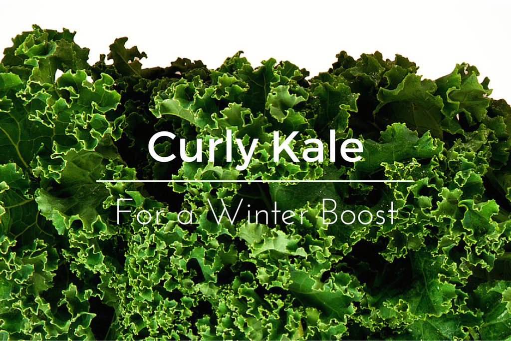 Curly Kale – The Winter Body Booster