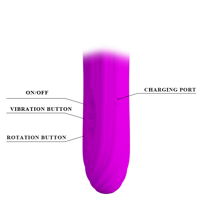 PRETTY LOVE Abraham Rotating G-Spot Vibrator Wand Massager USB Rechargeable