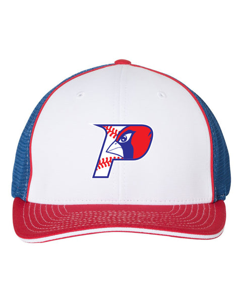 PLAINS BASEBALL RICHARDSON FITTED PULSE HAT (E.RICH172)